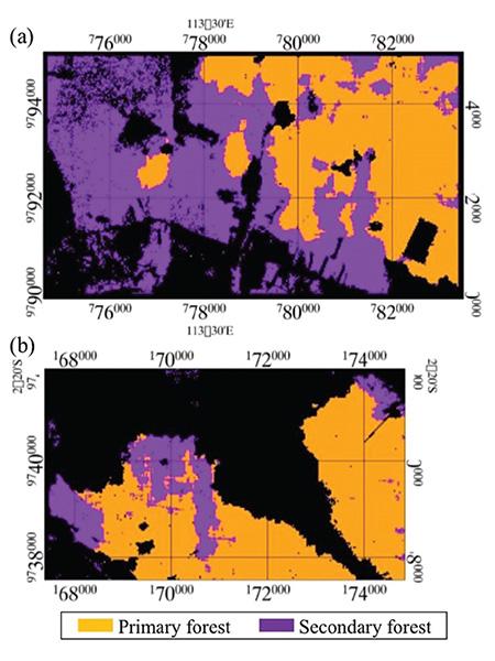 เทคนิคทาง Remote Sensing ด้วยข้อมูลภาพถ่ายดาวเทียมความละเอียดสูง