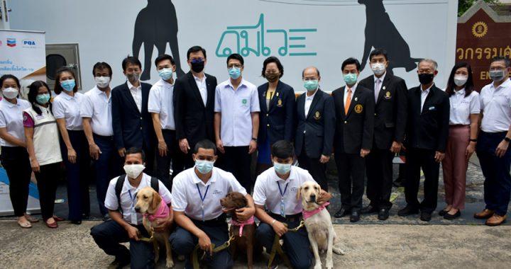 """โครงการ """"รถดมไว"""" การใช้สุนัขดมกลิ่นคัดกรองผู้ป่วยติดเชื้อโควิด-19 ที่ไม่แสดงอาการ"""